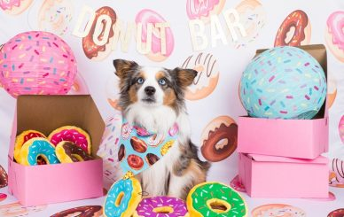 ZP_National Donut Day 2017_Geronimo_mo-4