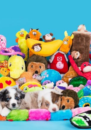 Puppy Toy Mountain-610